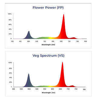 TG100-HVR Lighting Spectrum